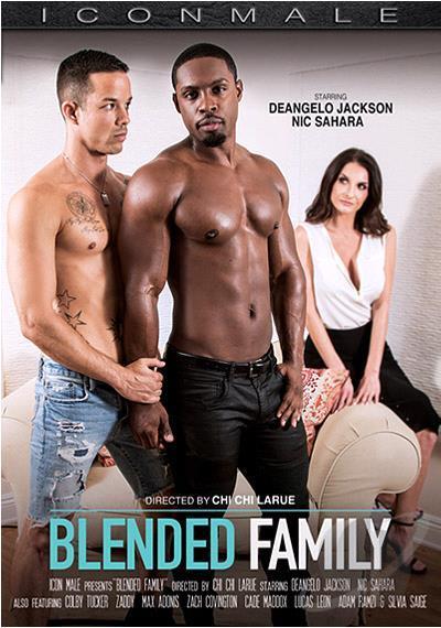 171 BLENDED FAMILY