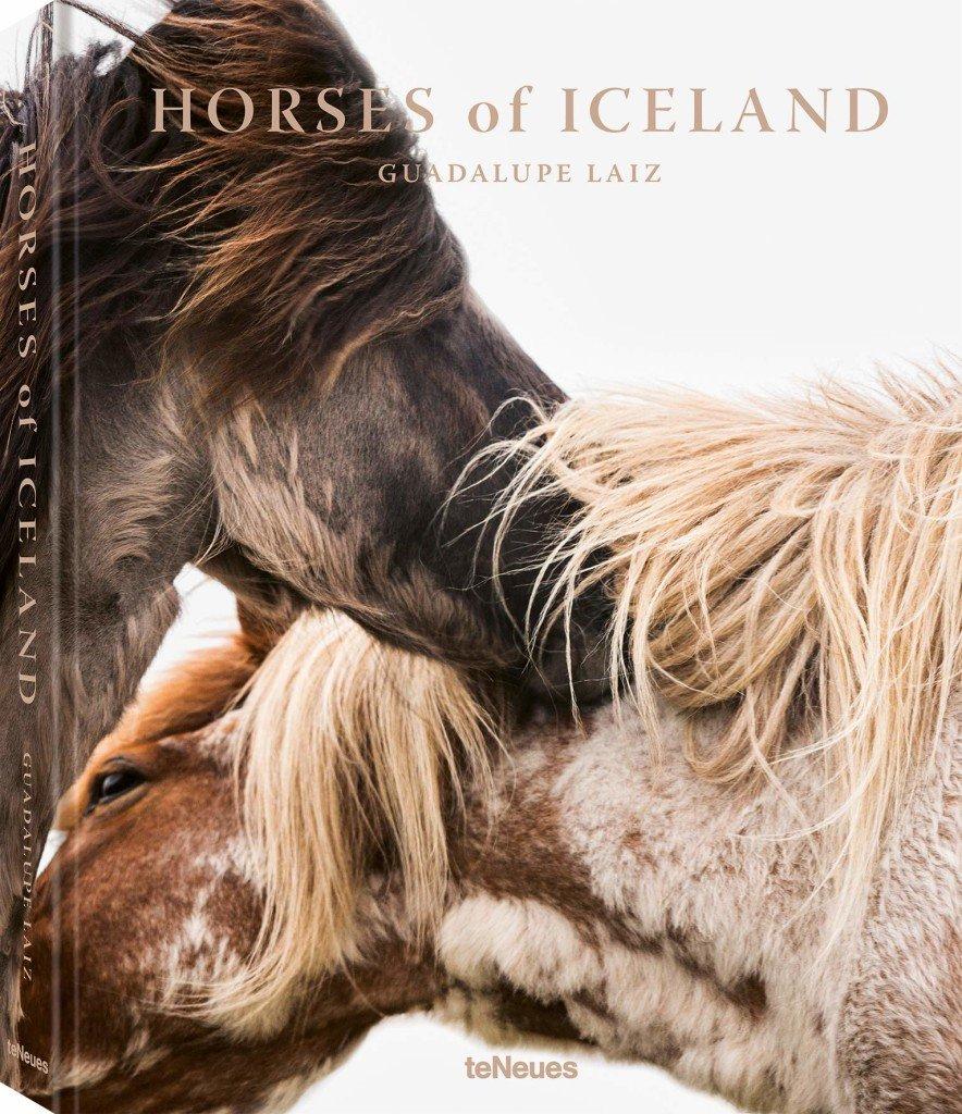 0905 HORSES OF ICELAND